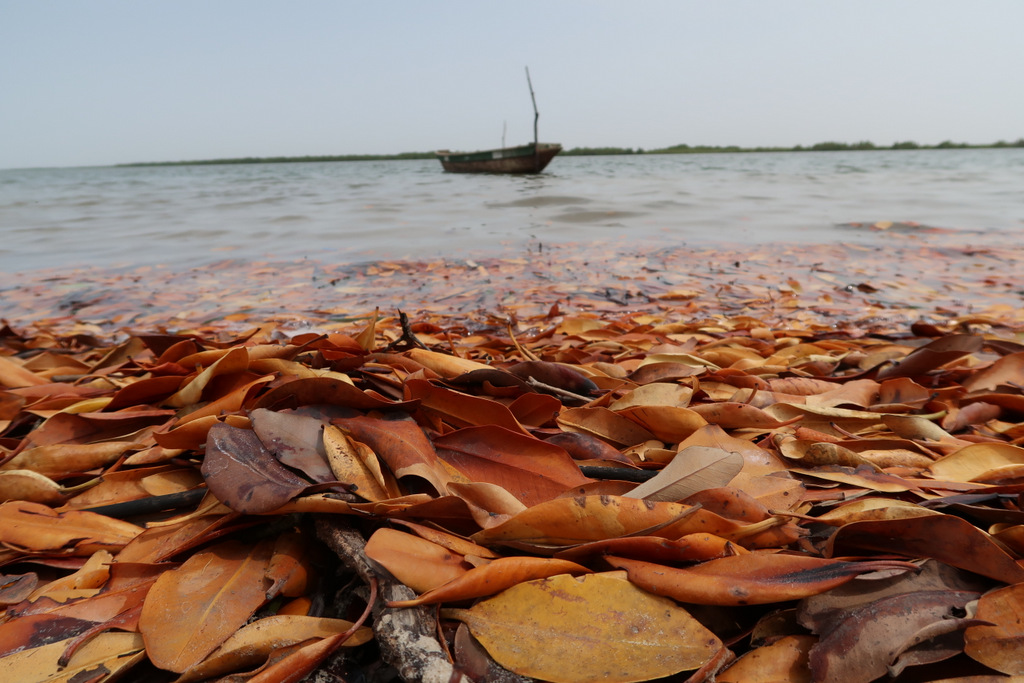 senegal must to see