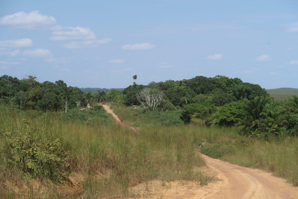 Gabon to Congo, Ndende to Dolisie road