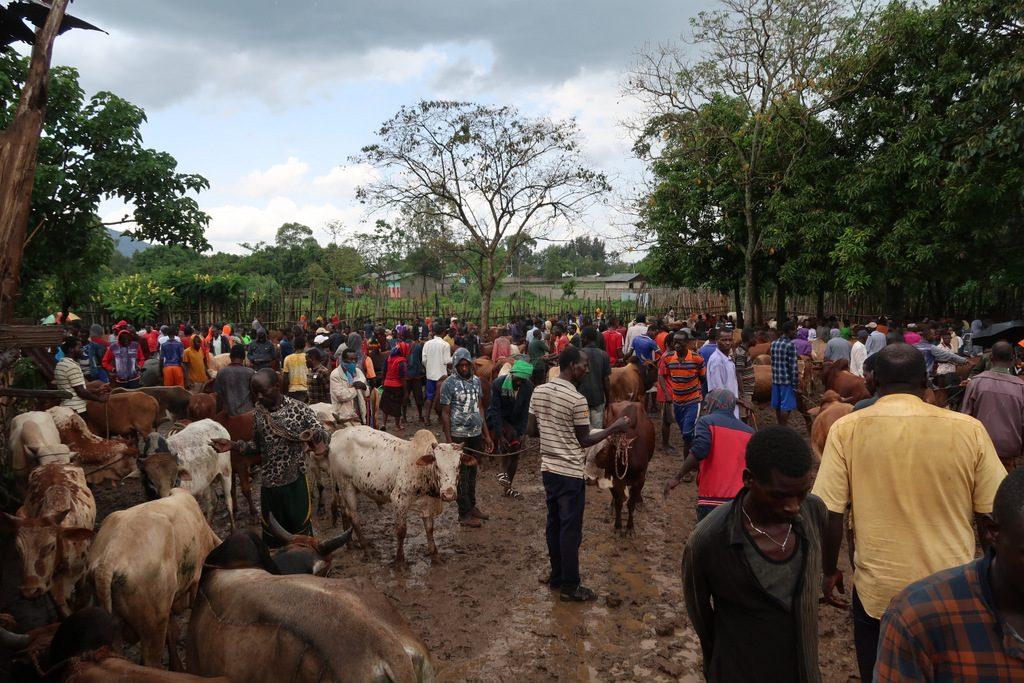 Jinka market, omo valley ethiopia