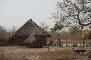 Gambia-traditional-houses