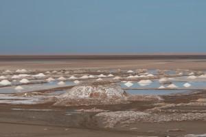 salt-winning-western-sahara